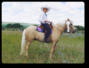 Cloud Nine, palomino pony at 4-H